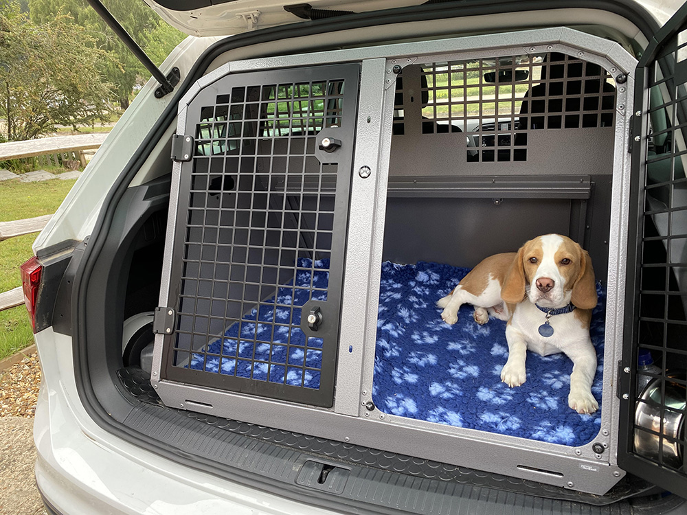Bed and Hone dog Boarding Fairlight Crash Tested Dog Crates
